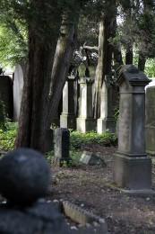 Friedhof Estherweg