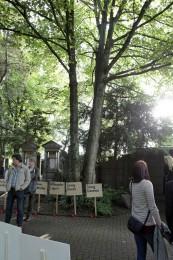 """Theaterprojekt """"Spurensuche"""". Die Schilder mit den Namen der Solinger Opfer des Holocaust werden jedes Jahr zur Gedenkfeier am 9. November von Schülerinnen und Schülern getragen."""
